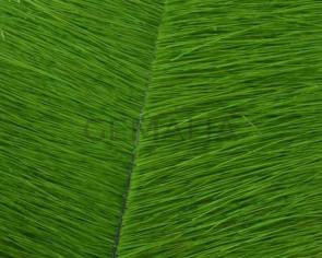 Piel de Potro. Plano 20mm. verde Manzana