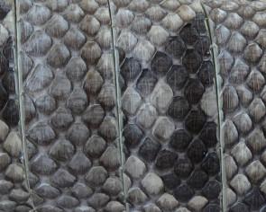 Piel de serpiente piton. Plano. 20x2,5mm. Blanco-negro. Calidad superior