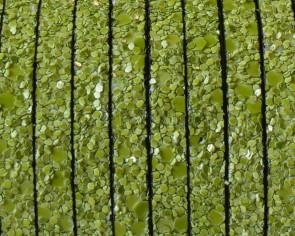 Tira fantasia sintetica. Plano 5x2mm. Verde manzana. Calidad Superior