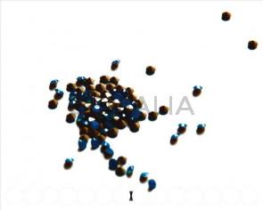 SWAROVSKI. Xilion Rose Chatons 3mm. Caribbean Blue Opal