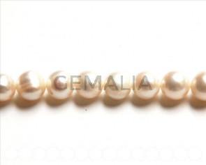 Perlas cultivadas. Round 10-11mm. blanco