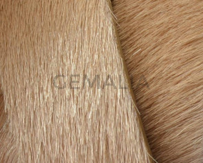 Colored cow hair Flat leather cord. 20mm. beige. Best Quality.