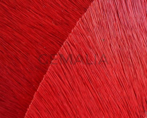 Colored cow hair Flat leather cord. 20mm. red. Best Quality.