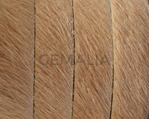 Colored cow hair Flat leather cord. 10mm. beige. Best Quality.