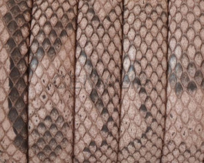 Python skin Leather cord. Half Round. 10x5mm. Salmon color.