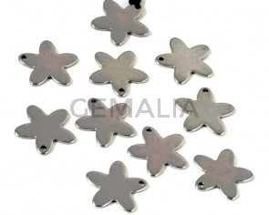 Stainless steel 304. Pendant. Star. 14x13x1mm. Silver. Inn.1mm.
